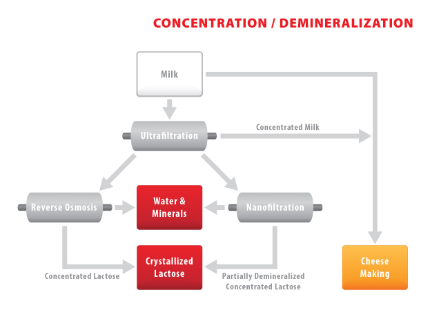AD32 - Lactose Concentration