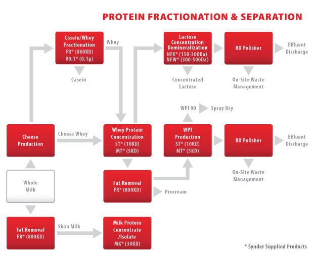 AD34 - Protein Fractionation-Separation