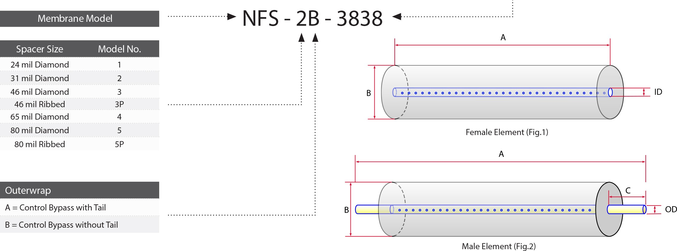 NF Example